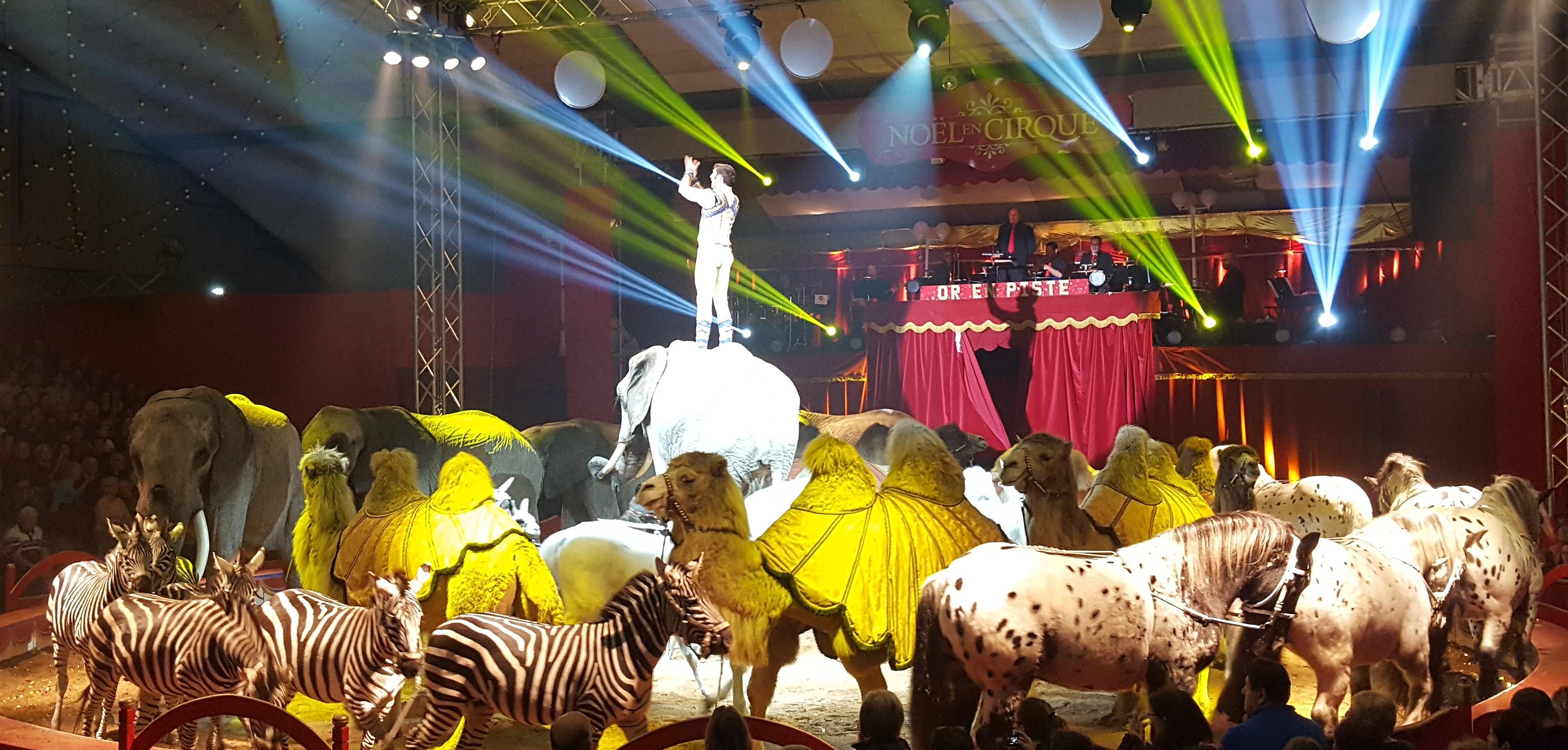 Or en Cirque Valence d'Agen